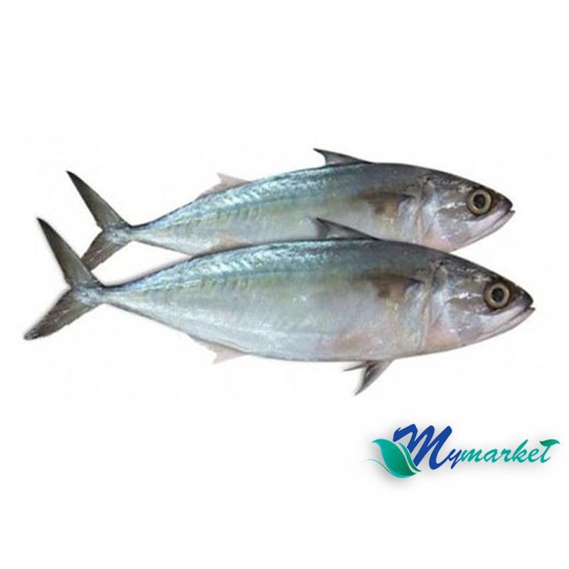 Ikan Kembung 500g
